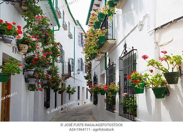 Spain , Andalucia Region, Cordoba Province, Priego de Cordoba City ,Old City