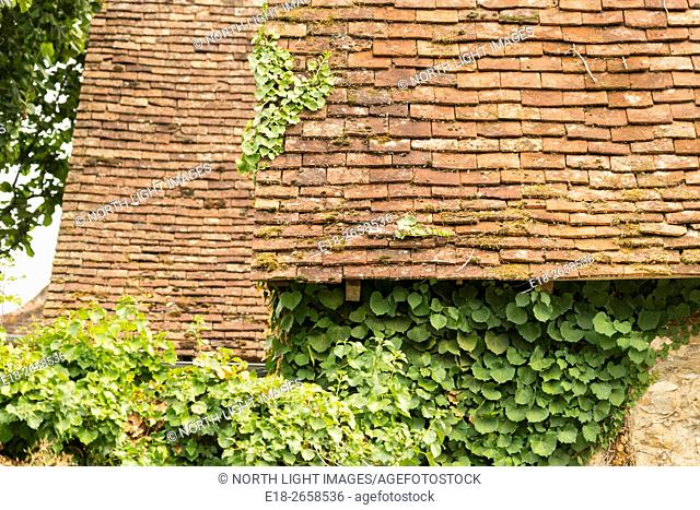 France, Midi-Pyrénées, Carrenac. Rooftops and ivy covered walls in quaint village in the Dordogne Valley
