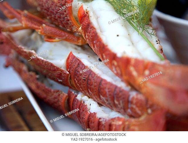 Cape Cuisine - Seafood Platter Lobster tails - South Africa