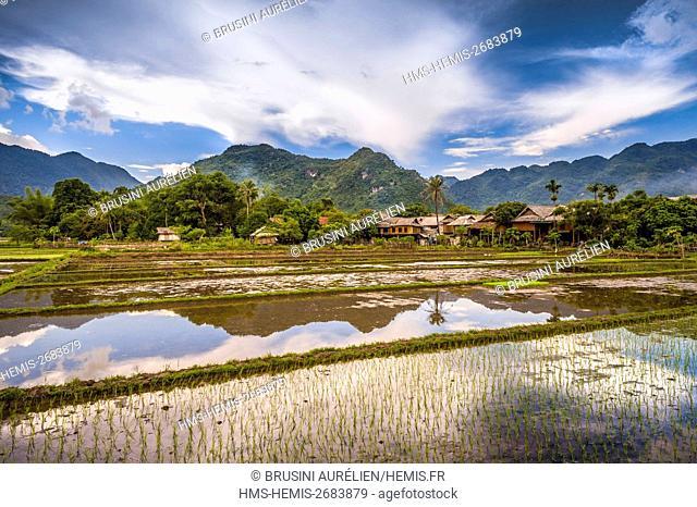 Vietnam, Mai Chau province, white Thaï (Thai Dam) village reflecting in the rice fields of the Mai Chau valley