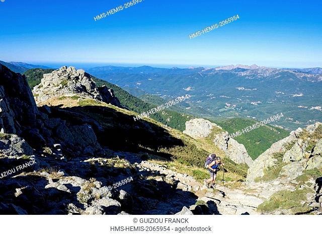 France, Corse du Sud, hiking on the GR 20, between Bassetta Sheepfold and Usciolu refuge, A Monda ridge or Statues ridge, Haut Taravu in the background