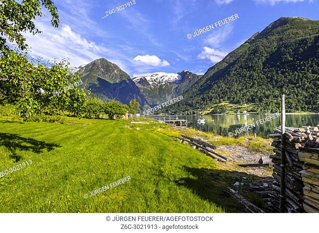 fruit orchard and snow-capped mountains at the fjord in Balestrand, Norway, fruit trees and green meadows at the shore of Sognefjorden