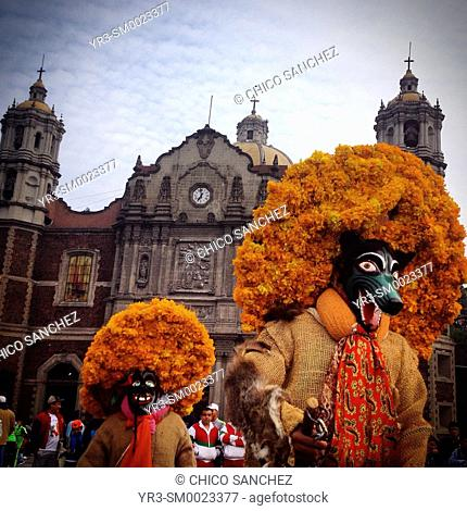 Men wearing hats decorated with marigold flowers, perform the Danza de los Tlacololeros during the annual pilgrimage to the Our Lady of Guadalupe basilica in...