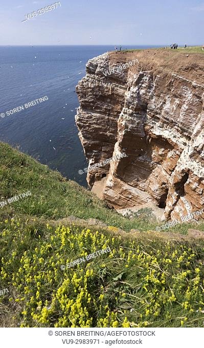 Helgoland German island with red sandstone cliffs, Germany
