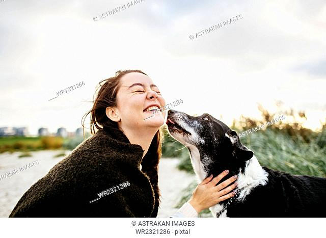 Cheerful young woman playing with dog on beach against sky