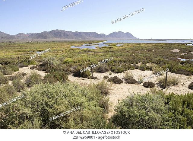 Salt lagoon in Cabo de Gata nature reserve, Almeria, Spain
