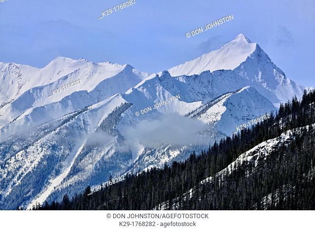 Van Horn Range with Mt  King, Yoho National Park, BC, Canada