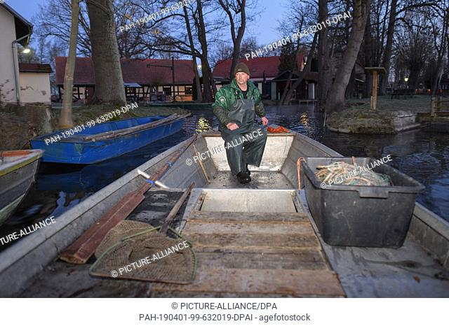 01 April 2019, Brandenburg, Groß Schauen: Laszlo Acz, fisherman of the fishery Köllnitz, goes before sunrise with his barge on the water of the Groß Schauener...