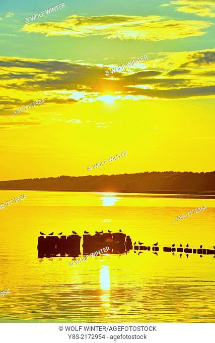 Sunset at Kamminke, Usedom, Germany