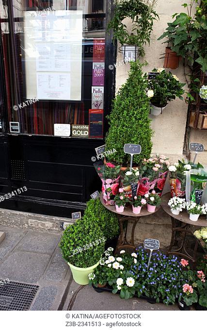 Flower shop on Rue Saint-Louis en L'ile, Ile Saint-Louis, Paris, France