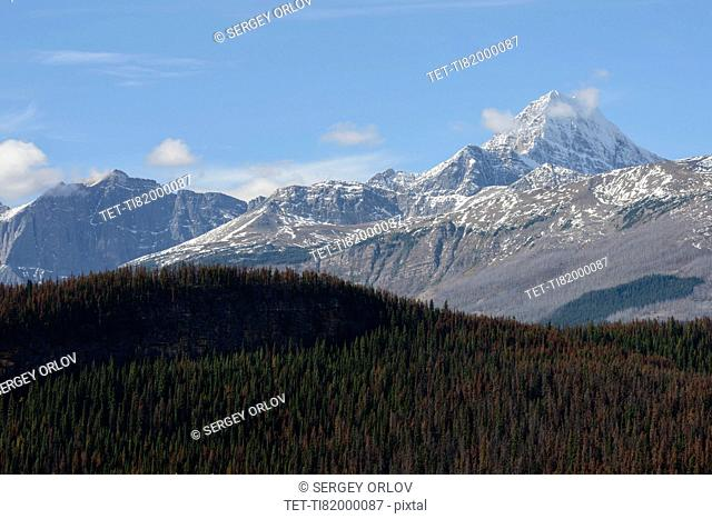 Canada, Alberta, Jasper, Snowcapped mountains and forest in Jasper National Park