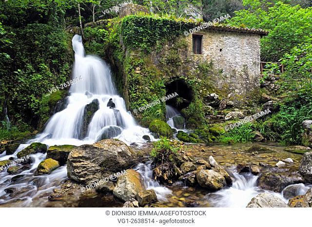 WWF Oasis of Morigerati, Campania, Italy, Europe