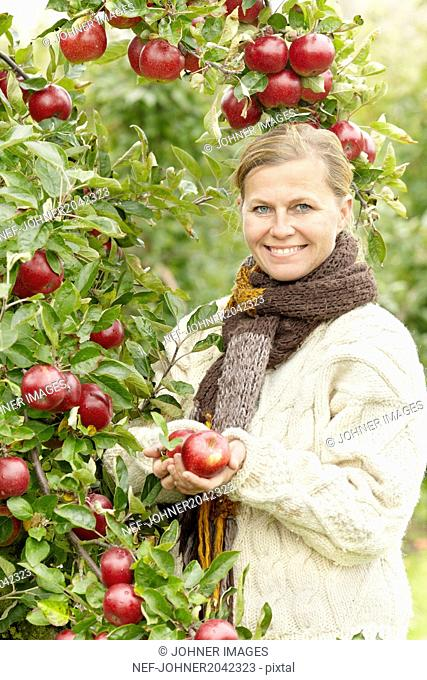 Smiling woman picking apples