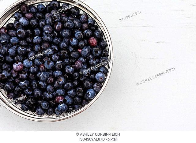 Sieve full of fresh blueberries, high angle