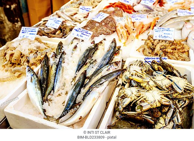 Seafood on ice in market