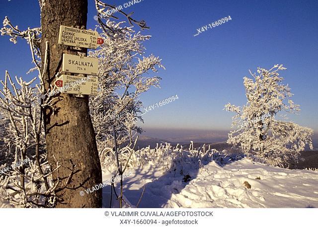 Winter scenery at Vysoka, Male Karpaty, Slovakia