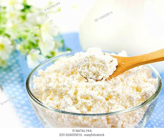 Fresh cottage cheese in glass bowl and jug with milk