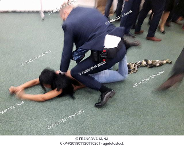 "A half-naked woman, a possible Femen activist, with the slogan """"Zeman, Putin's Slut"""" written in white on her breast attacked Czech President Milos Zeman in a..."