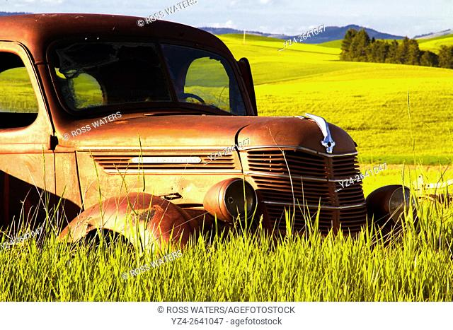 An old truck in a field in the Palouse, eastern Washington State, USA