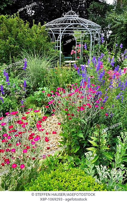 Crown pinks Lychnis coronaria syn  Silene coronaria and larkspurs Consolida ajacis in front of a garden pavilion  Design: Marianne and Detlef Lüdke