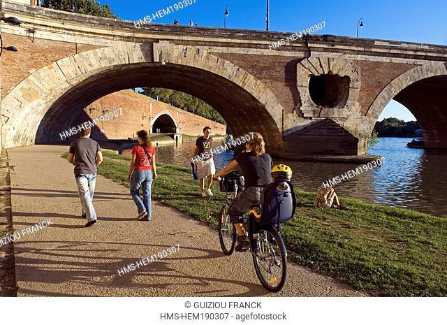 France, Haute Garonne, Toulouse, Garonne river banks, Henri Martin Promenade and Pont Neuf