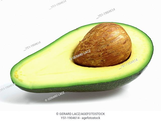 Avocado, persea gratissima against White Background