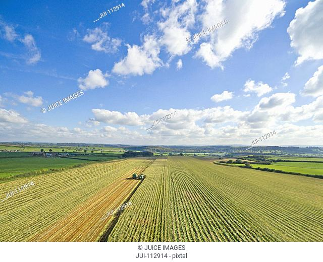 Scenic aerial landscape view of tractors in sunny maize field under blue sky with clouds