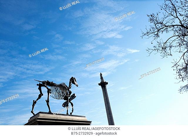 Skeleton horse and Lord Nelson's Column, with blue sky. London, England