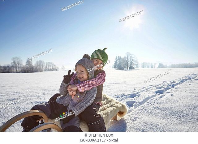 Portrait of two brothers on sled