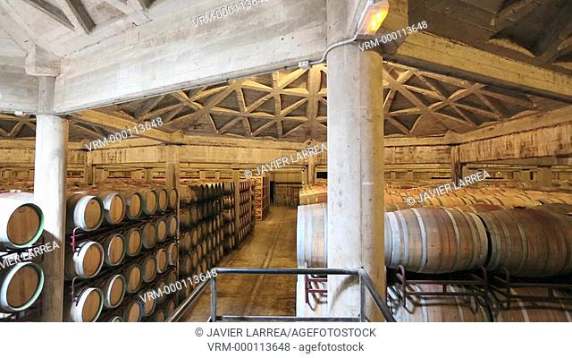 Barrel cellar, Bodegas Olarra, Logroño, La Rioja, Spain