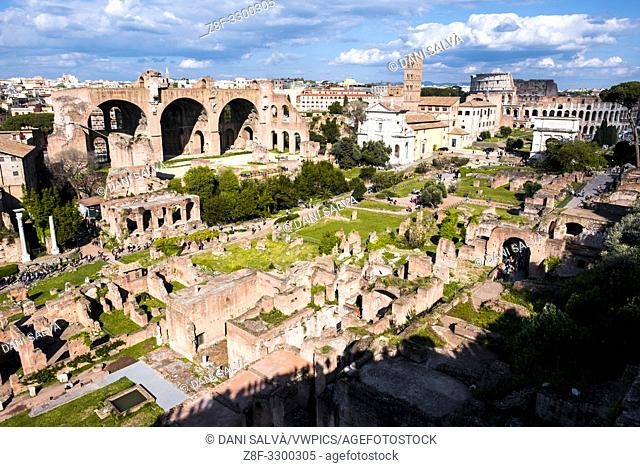 Ruins of the ancient Rome in the Roman Forum