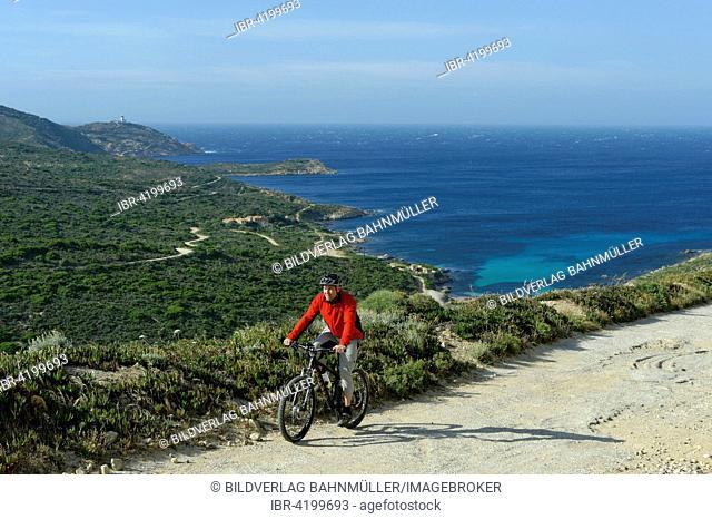 Mountain biker, bike ride on the La Revellata peninsula, near Calvi, Haute-Corse, Corsica, France