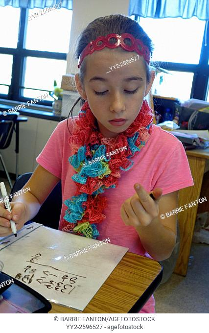 6th Grade Girl Solving Math Problem, Wellsville, New York, United States