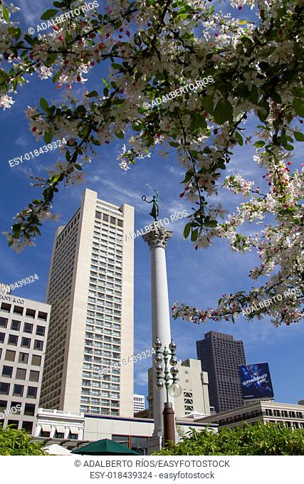 The Union Square in San Francisco is a square of 11 thousand square meters surrounded by a variety of hotels restaurants shops theaters and cultural centers...