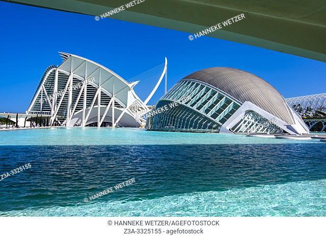 Planetarium and Science Museum, Ciudad de las artes y las ciencias, City of Arts and Science, Valencia, Spain, Europe