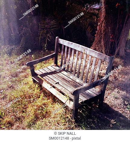 An empty park bench