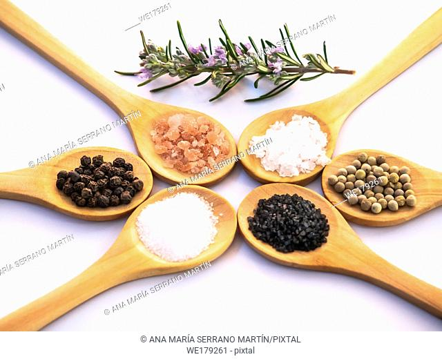 Wooden spoons with himalayan salt, black hawaii salt, common salt, salt flakes, peppercorns and a rosemary twig on a white background