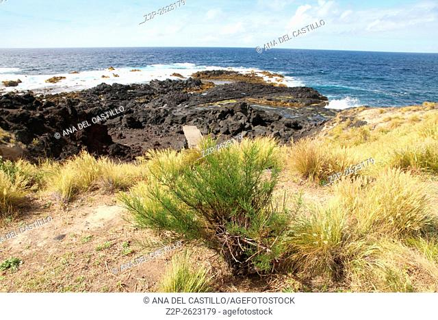 Coast panorama from Mosteiros village Sao Miguel Azores islands Portugal