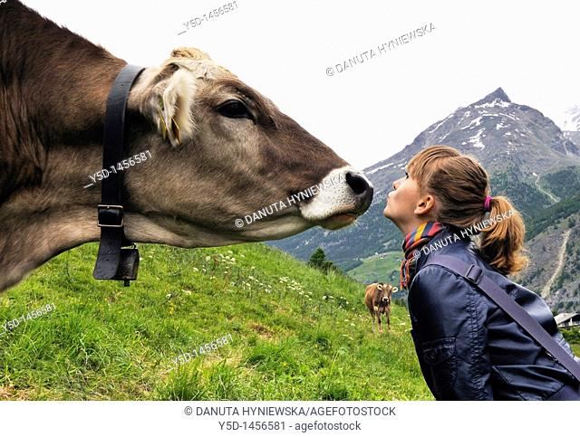 Close encounters, Saas Fee, canton Valais, Switzerland, Swiss Alps