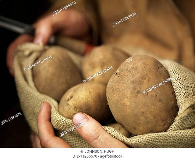 Hands holding a sack of organic potatoes