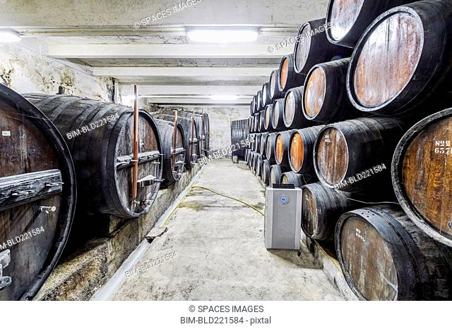 Barrels of wine aging in wine cellar