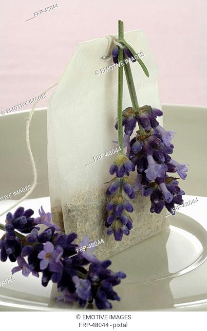 Tea bag and lavender tea