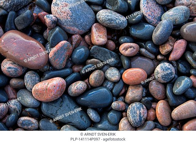 Close up of wet colourful pebbles on shingle beach at low tide