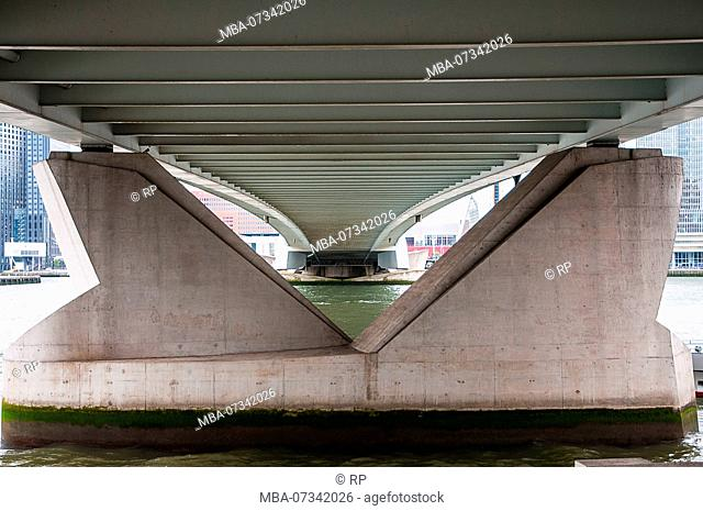 Under the erasmus bridge in Rotterdam