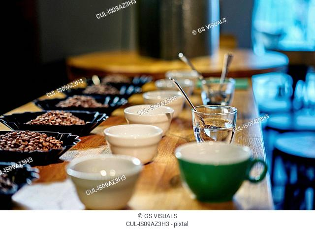 Rows of coffee beans and bowls for tasting on coffee shop counter