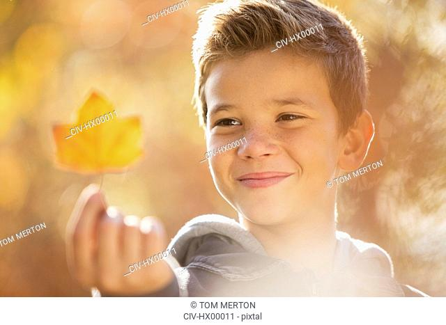 Close up boy holding golden autumn leaf