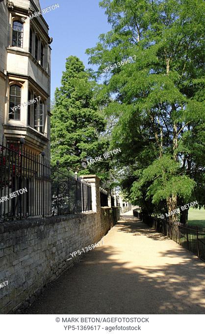 Deadman's Walk by Merton College Oxford