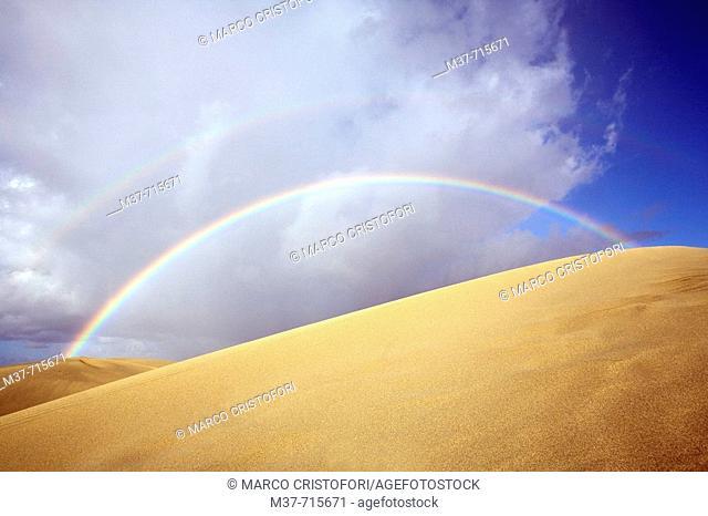 Spain. Canary islands. Gran Canaria. Maspalomas. Dunes