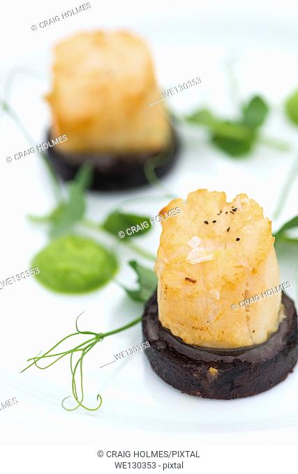 Seared Scallops on black pudding and lambs lettuce