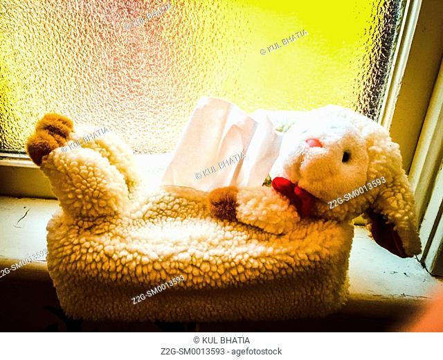 Tissue holder shaped like a lamb sits on a windowsill, Ontario, Canada